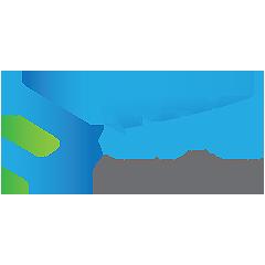 PT-Strategy-Partner-Solution